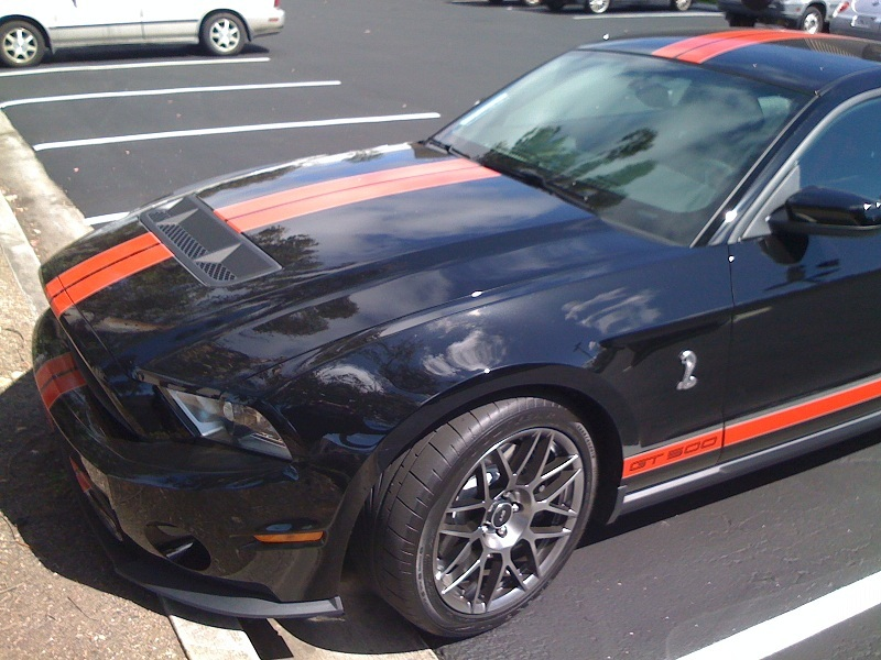 2012 Ford Shelby for Sale