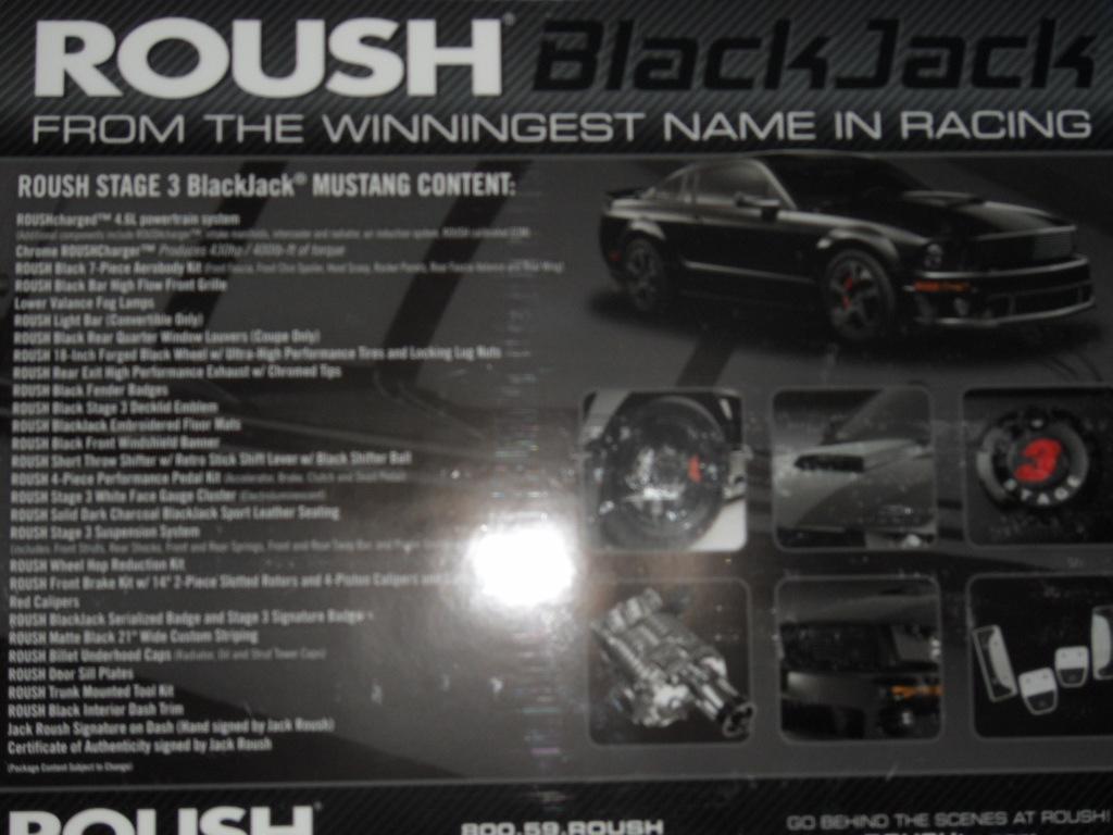 2007 roush blackjack for sale